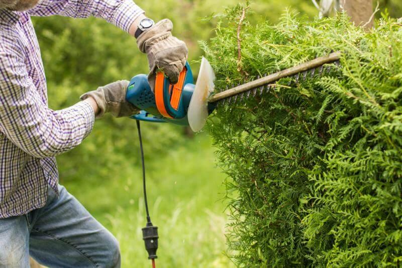 criteres fixation tarif jardinier professionnel