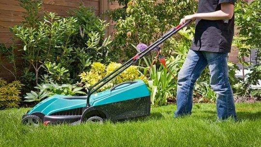 Prix des travaux tarif pour la tonte de la pelouse