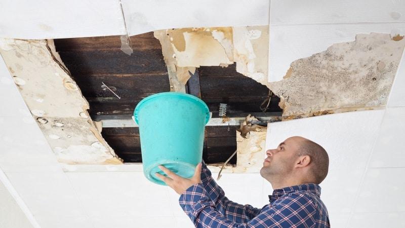 prix renover plafond apres degat des eaux