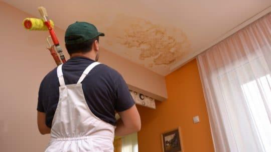 prix peinture anti humidite